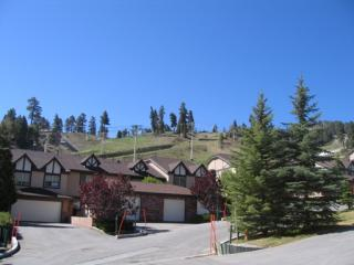 1377 Club View Drive, Big Bear Lake CA
