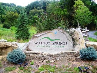 Walnut Springs Mountain Reserve, Union, WV 24983