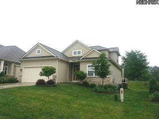241 Prestwick Drive, Broadview Heights OH