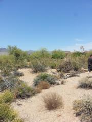 9214 East Sunrise Circle, Carefree AZ