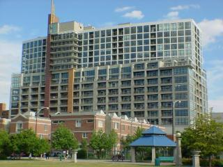 1530 South State Street #18E, Chicago IL