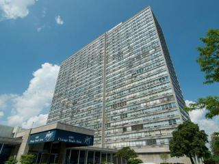 4800 S Chicago Beach Dr #2508N, Chicago, IL 60615