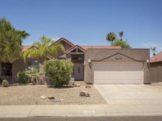 10828 N 110th Pl, Scottsdale, AZ 85259