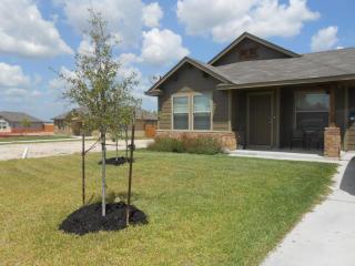204 Azurite Drive, Jarrell TX