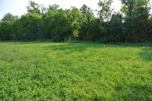 Tr 10 Boothe Ln, Rocheport, MO 65279
