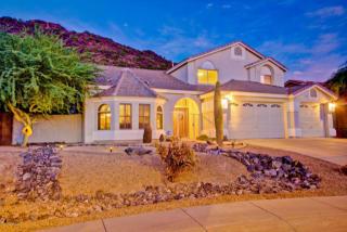 21253 N 52nd Ave, Glendale, AZ 85308