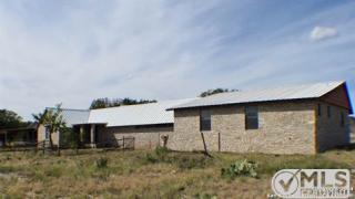 4214 Weisenburg Rd, Junction, TX 76849