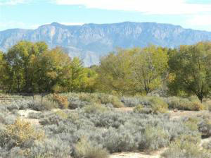 64 Victor Rd, Corrales, NM 87048