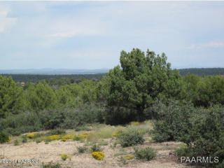 40 Rancho Diamante, Skull Valley, AZ 86338