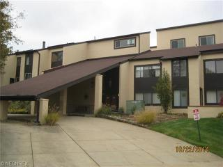 186 Court Dr #102, Fairlawn, OH