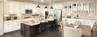 Clarksburg Village Single Family Neotraditional Series by Ryan Homes