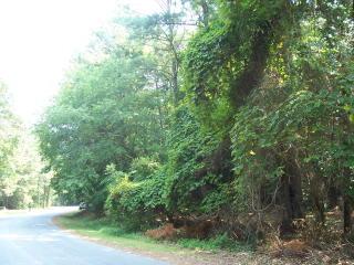 Lot 198 Heron Drive, Machipongo VA