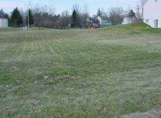 279 Old Creek Drive, Saline MI