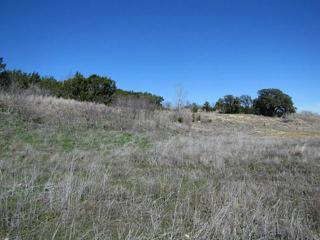 1645 Beacon Lake Drive, Bluff Dale TX