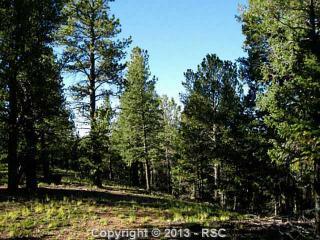 221 Woodrock Way, Divide CO