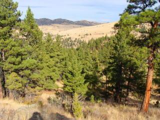 Lot 27 Ly Ranchettes, Wolf Creek, MT 59648