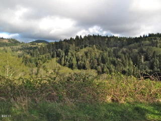 47101 Hill Crest Drive, Neskowin OR