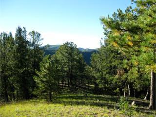 161 Woodrock Way, Divide CO
