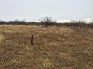 Eagle Boulevard, Fritch TX