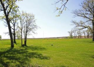 LOT17 Blk1 Royal Oaks, Parkers Prairie MN