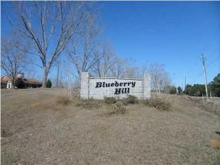 Blueberry Lane, Theodore AL