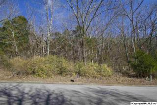 Lot 29 Burlington Drive, Huntsville AL