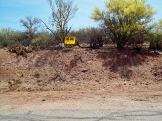 15651 East Wandering Creek Place #9, Vail AZ