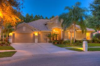 17810 Arbor Greene Drive, Tampa FL