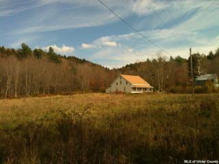 188 Mill Hollow Road, Jewett NY