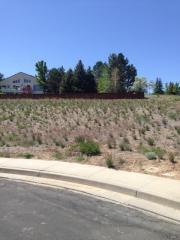 4269 Whistlewood Court, Reno NV