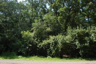 8819 Shadow Lane, Bull Valley IL