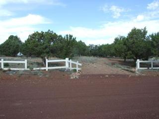 2142 Halite Rd, Clay Springs, AZ 85923