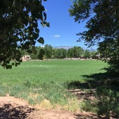 1022 Cottonwood Drive Northwest, Los Ranchos NM