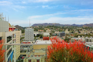 6250 Hollywood Boulevard #11E, Los Angeles CA