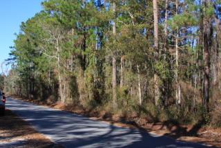 Blues Reach Road, Townsend GA