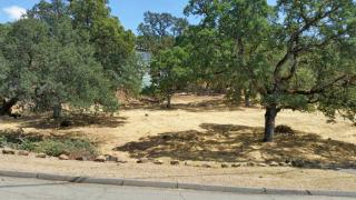 250 Harness Ct, Pope Valley, CA 94567