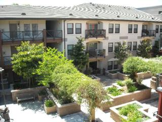 125 Patterson Street #109, San Jose CA