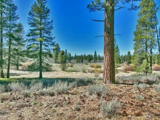 13201 Snowshoe Thompson Circle #455, Truckee CA