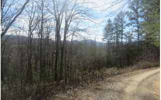 8 Acres Off White Road, Blairsville GA
