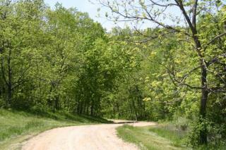 1043 West Schapville Road, Scales Mound IL
