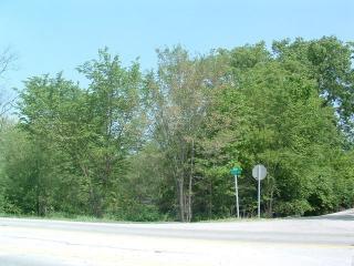 15835 114th Court, Orland Park IL