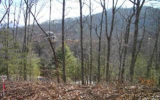 17 Dog Wood, Hayesville NC