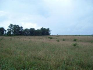 Tract C Farm Road 1078, Cassville MO