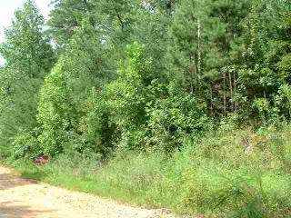 Horse Creek Road, Mill Spring NC