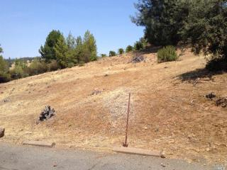 Harness Dr, Pope Valley, CA 94567