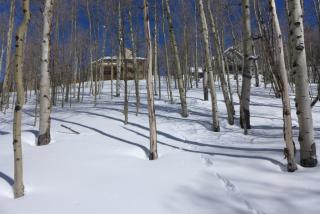 43 Ruby Drive, Crested Butte CO