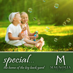 MAGNOLIA VALLEY-AUG by Crown Communities