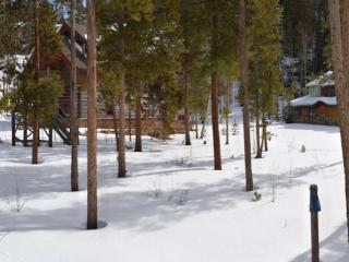 56 Tip Top Trail, Keystone CO