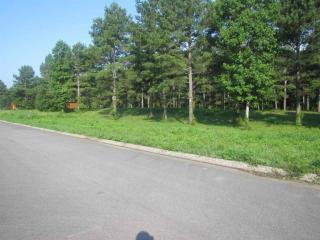 155 Rivers Edge Lane, Benton TN