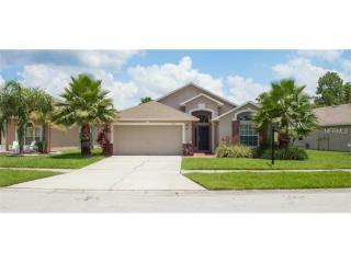 14311 Moon Flower Drive, Tampa FL